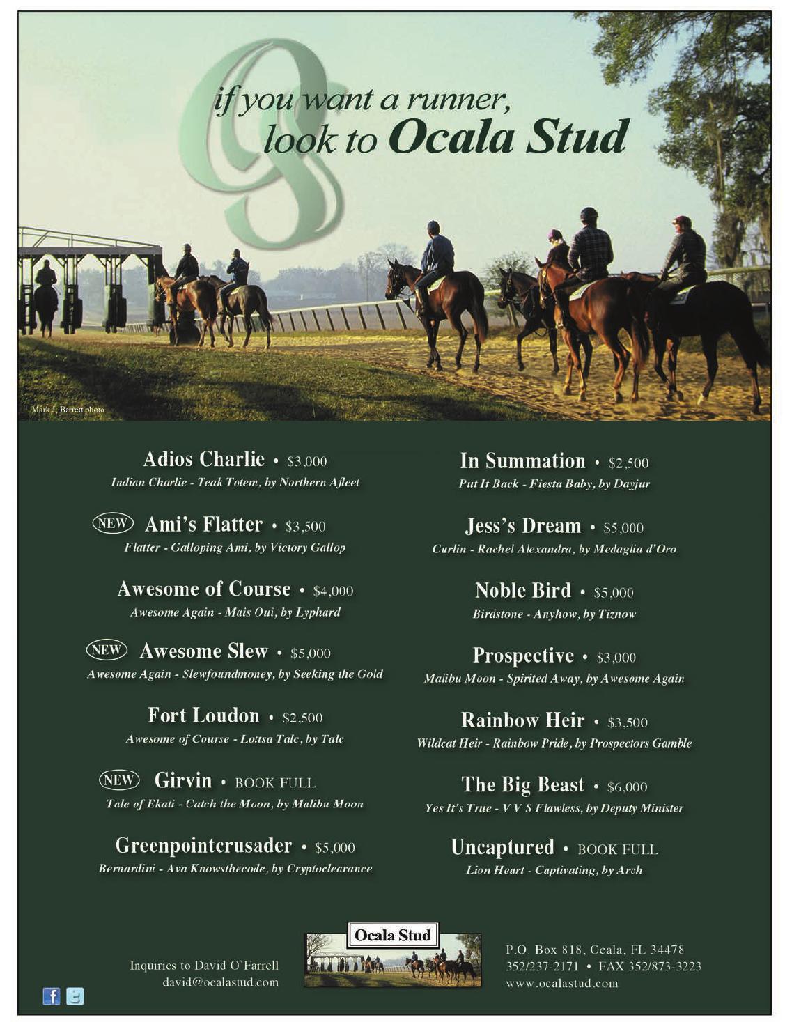 BY BROCK SHERIDAN Ocala Breeders' Sales Company beg