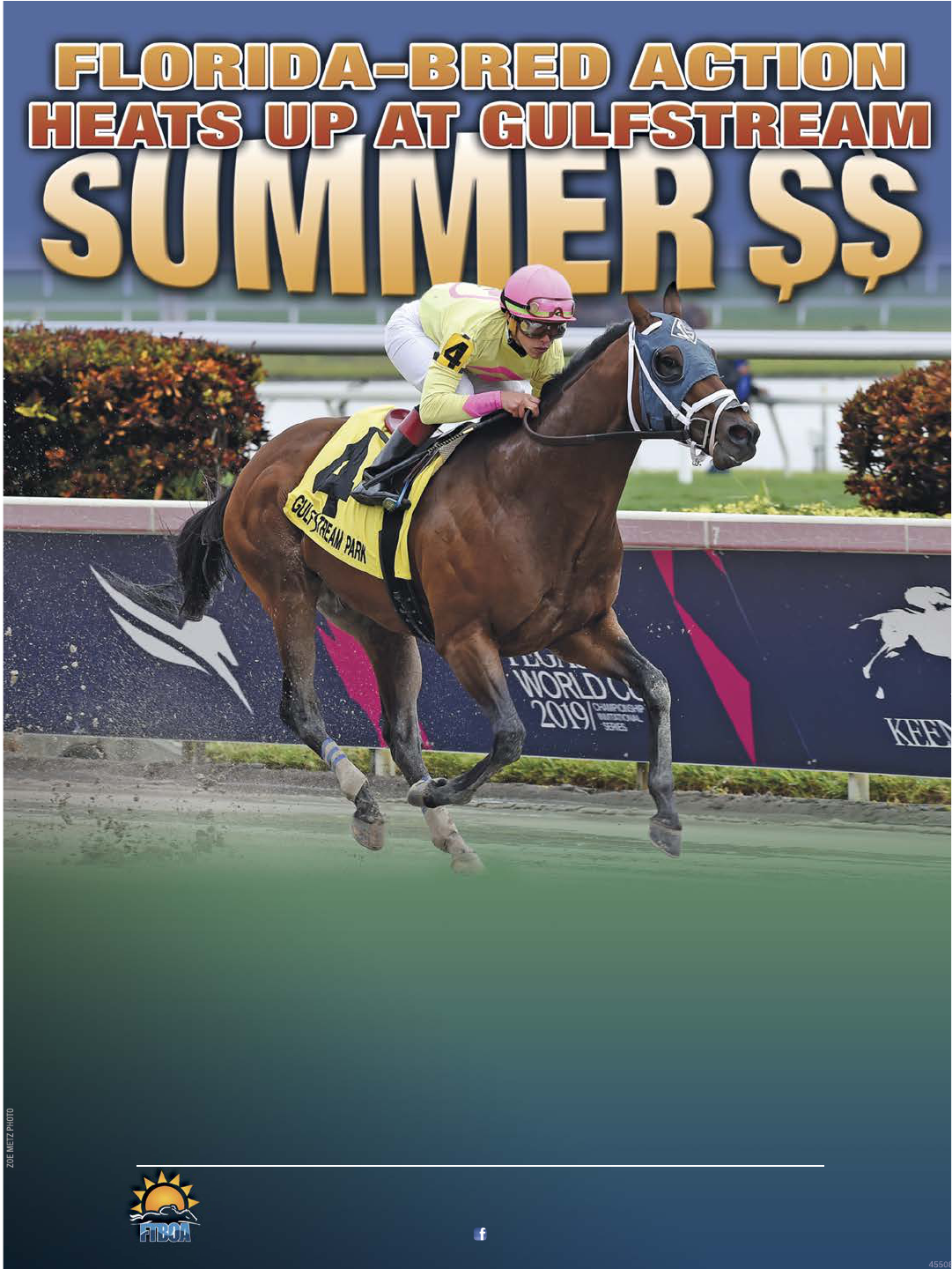 Wire-To-Wire Issues from Florida Equine Publications
